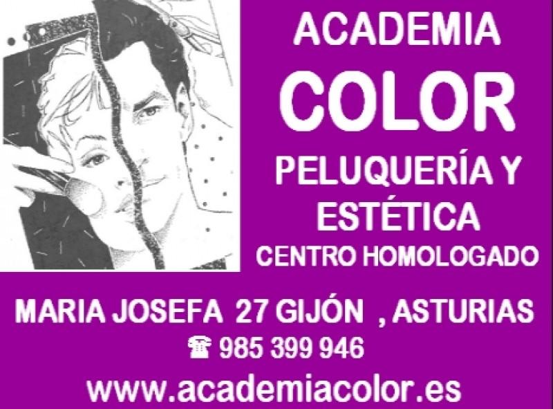 https://gijonglobal.es/storage/Academia Color