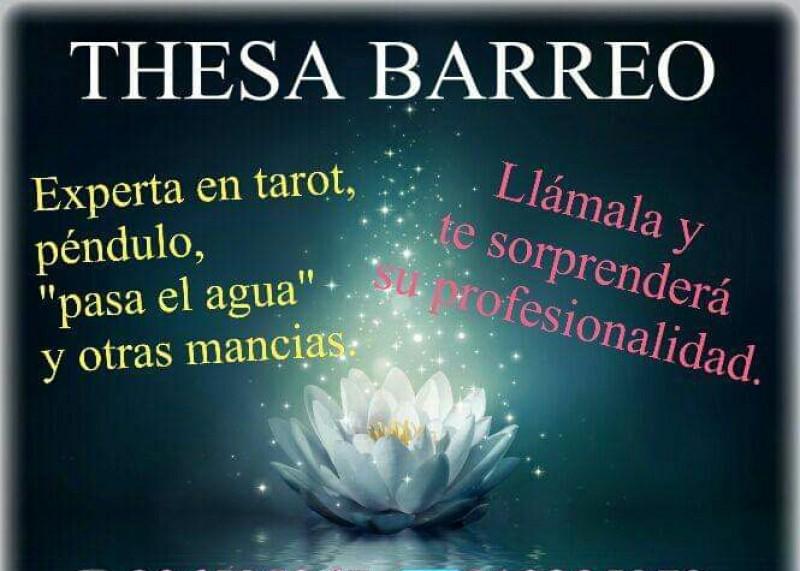 https://gijonglobal.es/storage/Thesa Barreo